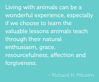 Living with animals can be a wonderful experience, especially if we choose to learn the valuable lessons animals teach through their natural enthusiasm, grace, resourcefulness, affection and forgiveness. -Richard H. Pitcairn